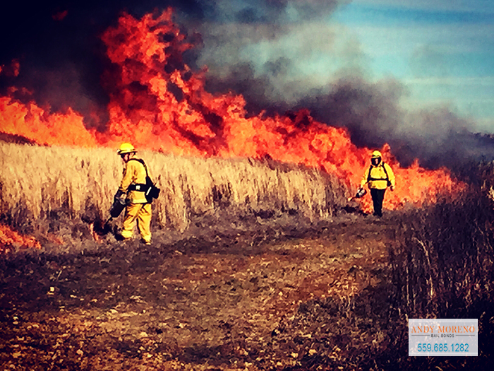 Staying Safe During California's Wildfire Season